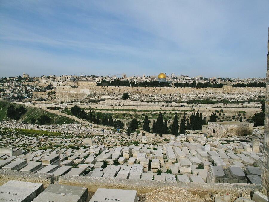 こんな風景も。墓はみんな神殿の方に足が向くように造られているのです。 エルサレム編